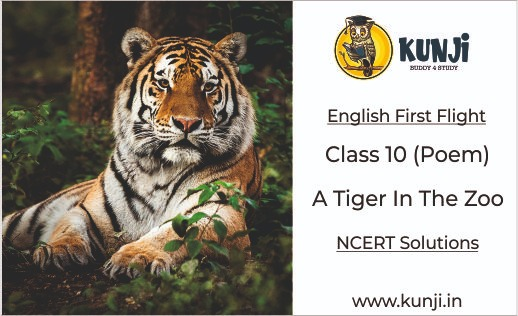 A Tiger in the Zoo Poem Class 10 English Chapter 3, Summary, Explanation, Solutions