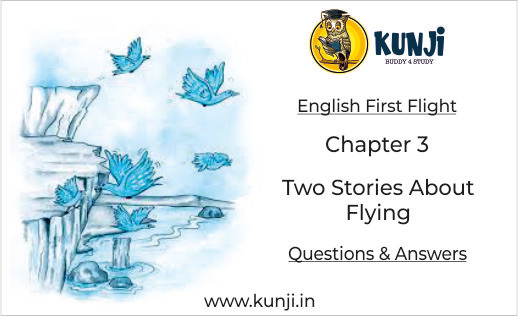 Two Stories About Flying Class 10 English First Flight Chapter 3 NCERT Solutions