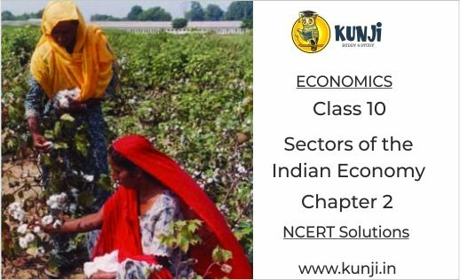 Sectors of the Indian Economy Chapter 2 Economics CBSE Class 10 NCERT Solutions