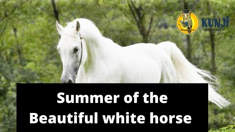 Summer of the Beautiful white hors