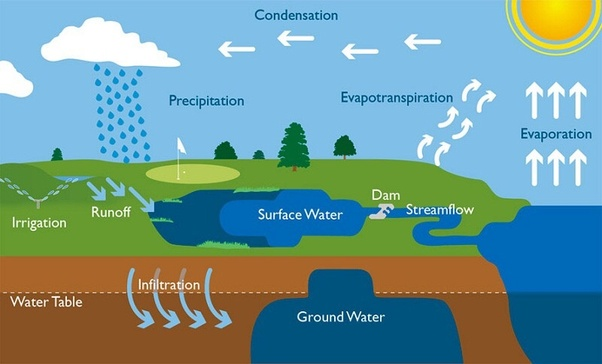 NCERT Solutions for Class 10 Geography Chapter 3 Water Resources
