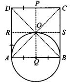 image231