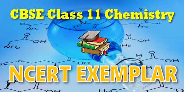 NCERT Exemplar Class 11 Chemistry Chapter 1 Some Basic Concepts of Chemistry